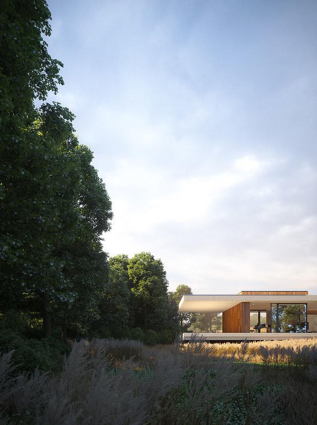 Wizualizacja domu - dom pod lasem